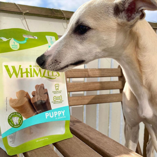 Whimzees Puppy Value Bag M/L 7st