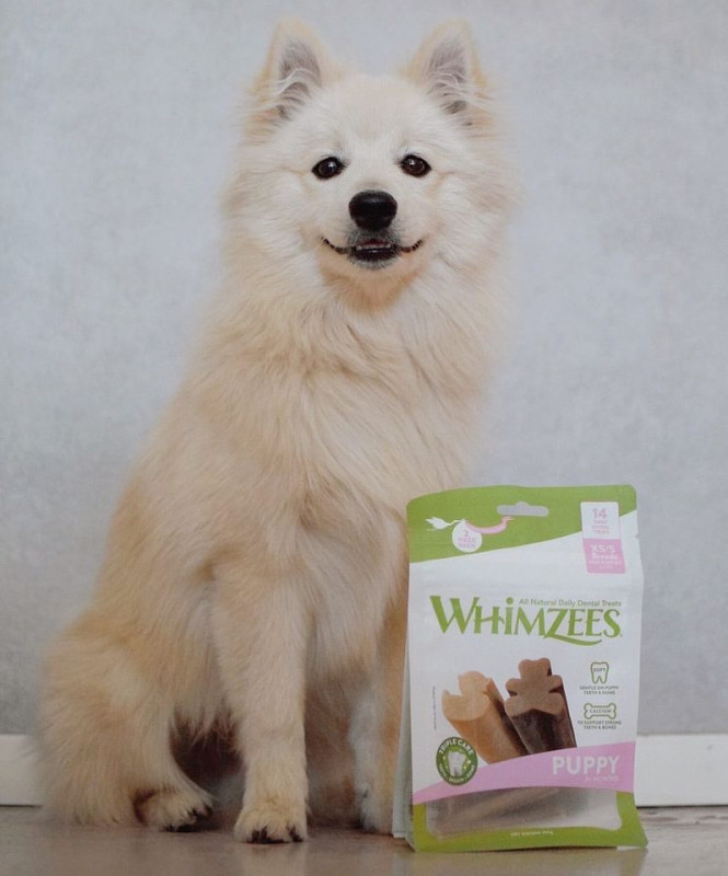 Whimzees Puppy Value Bag XS/S 14st