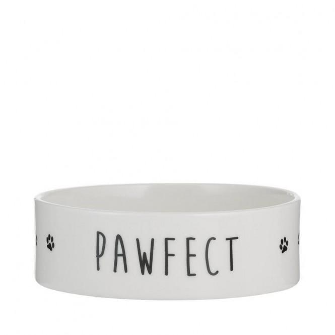 Mason Pawfect