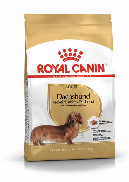 Royal Canin Hund Dachshund Adult 1,5kg