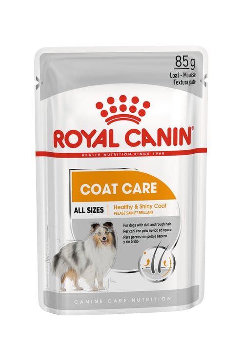 Royal Canin Mini Coat Care Wet