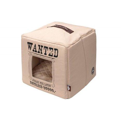 DandD Igloo Wanted